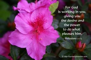 Filipeni 2 13