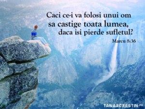 versete_3