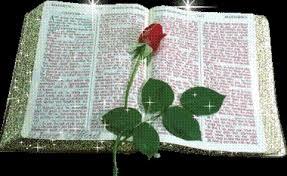 Biblia si trandafirul
