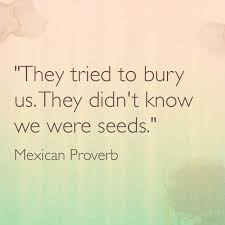 They tried to bury us.They didn't  know we were seeds. (Mexican Proverb)