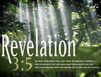 Reveltion-3-5-Nature-Wallpaper
