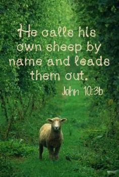 Ioan 10.3