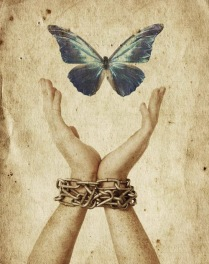 05-freedom-butterfly